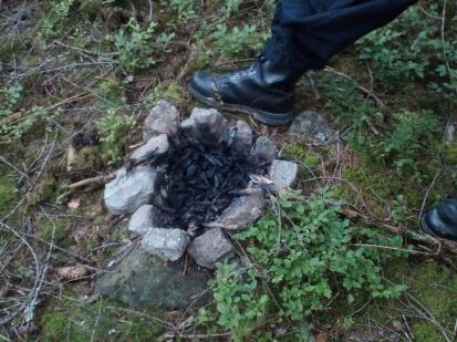 Porušení lesního zákona  -  ohniště